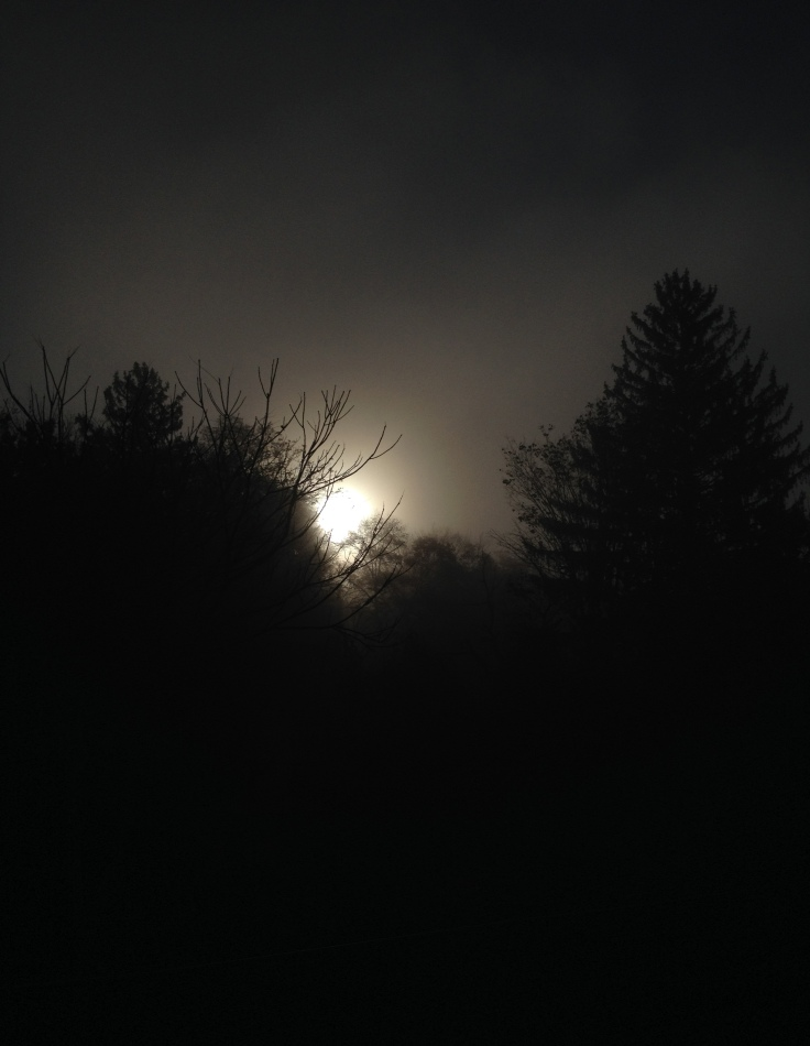 The sun is peaking out behind thick fog at 8:30 am