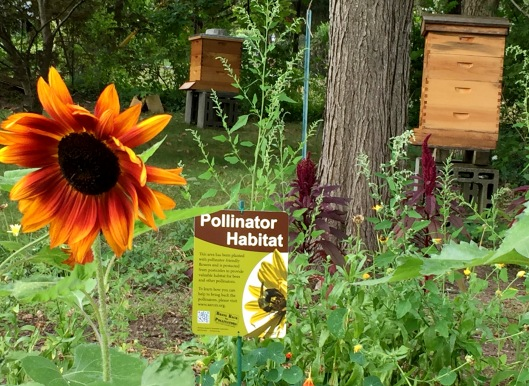 Pollinator Habitat sign from Xerces Society