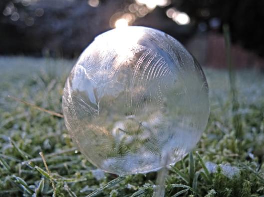 Photo of frozen bubble